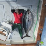 Nuno and a cow Bigeye