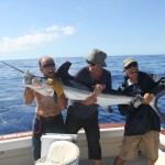 White marlin for Mr. Lindnert. August