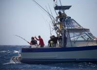 Happy team fighting a 240 pounds bigeye tuna. May