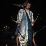Cow Yellowfin